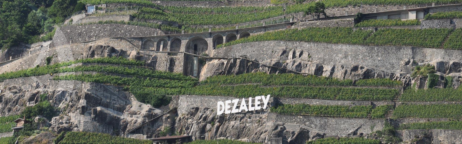 Suisse : coup de coeur du Canton de Vaud